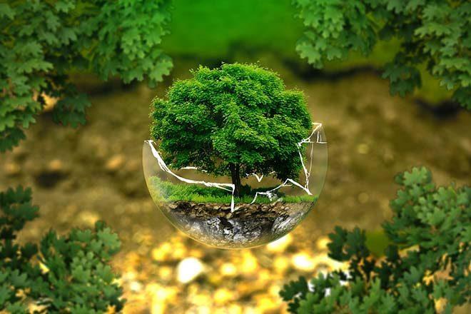 environmental-protection-326923_1280_s