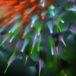 fractal-1390553_1280_s