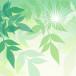 spring-614983_1920_s